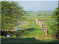 TV5299 : Cuckmere Haven by Oast House Archive