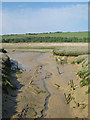 TV5197 : Mudbanks by the River Cuckmere by Oast House Archive