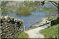 NY3506 : Shore of Rydal Water by Graham Horn
