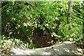 SX0960 : Lostwithiel: Restormel Royal Mine by Martin Bodman