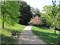 TQ8110 : Path through Alexandra Park by Oast House Archive