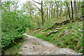 NY3802 : Skelghyll path by Graham Horn