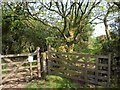 SX6762 : Gates by Diamond Lane by Derek Harper