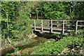 SU0196 : Footbridge at Upper Mill Farm by Philip Halling