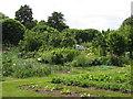 TQ3767 : Harvington Allotments, South Eden Park Road, BR3 by Mike Quinn