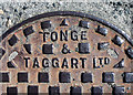 C0236 : Manhole cover near Dunfanaghy by Rossographer