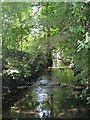TQ3974 : The Quaggy River, Manor House Gardens (4) by Mike Quinn