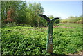 TQ3568 : National Cycle Network Milepost, South Norwood Country Park by Nigel Chadwick