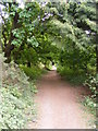 TM2446 : Footpath to Newbourne Road by Adrian Cable