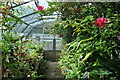SK5907 : Belgrave Hall - Greenhouse by Ashley Dace