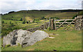 SK2383 : Hathersage spring by Michael Fox