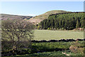 NN9705 : View Across Glen Devon by Martin Addison