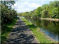 NS3980 : Cycle route beside the River Leven by Lairich Rig
