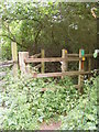 TM2856 : Kissing Gate on the footpath to Dallinghoo Road by Adrian Cable