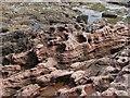 NT9659 : Sea washed sandstone, Lamberton Skers : Week 19