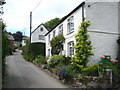 SX1254 : Cottage in Water Lane Golant by Rod Allday