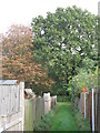 TQ4171 : Footpath north of Portland Road, BR1 by Mike Quinn