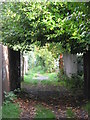 TQ4171 : Footpath between Portland Road and Leamington Avenue, BR1 (4) by Mike Quinn