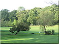 TQ4270 : The valley of the Kyd Brook, Sundridge Park Golf Course (2) by Mike Quinn