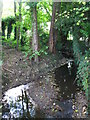 TQ4369 : The Kyd Brook by the southern end of Gosshill Road, BR7 (5) by Mike Quinn