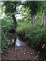 TQ4368 : The Kyd Brook south of Pond Wood (10) by Mike Quinn