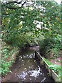 TQ4468 : The Kyd Brook west of Petts Wood (3) by Mike Quinn