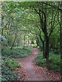 TQ4468 : Footpath in Petts Wood by Mike Quinn