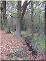 TQ4466 : The Kyd Brook - Main Branch, west of Petts Wood Recreation Ground by Mike Quinn