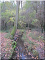 TQ4466 : The Kyd Brook - Main Branch, west of Petts Wood Recreation Ground (2) by Mike Quinn
