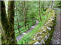 NN7623 : Down to the River Lednock gorge by Anthony O'Neil