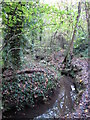 TQ4466 : The Kyd Brook - Main Branch, in Roundabout Wood (7) by Mike Quinn