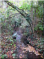 TQ4365 : The Kyd Brook - Main Branch, in Clay Wood (2) by Mike Quinn