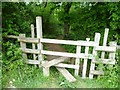 TQ2913 : Stile into wood above Wellcombe Bottom by Shazz