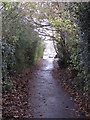 TQ4466 : Footpath south of Shepperton Road, BR5 (2) by Mike Quinn