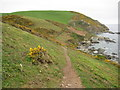 SX1750 : Coast path approaching East Coombe by Philip Halling
