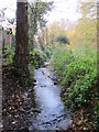 TQ4466 : The Kyd Brook - East Branch, west of Sparrow Drive, BR5 (2) by Mike Quinn