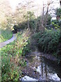 TQ4466 : The Kyd Brook - East Branch, west of Sparrow Drive, BR5 (3) by Mike Quinn
