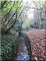 TQ4466 : The Kyd Brook - East Branch, west of St. Thomas' Drive, BR5 (6) by Mike Quinn