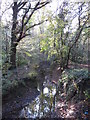 TQ4466 : The Kyd Brook - East Branch, on Gumping Common (3) by Mike Quinn