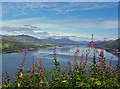 NG8634 : Loch Carron, viewpoint view by Richard Dorrell