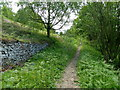 SK2975 : Valley footpath below Fox Lane by Andrew Hill