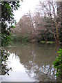 TQ4264 : Lake at the northern end of Lake Wood (2) by Mike Quinn