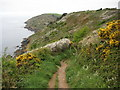SX2150 : Coast path east of Polperro by Philip Halling