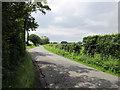 SJ4771 : Country lane near Dunham Heath by Jeff Buck
