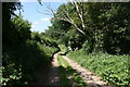 SJ4159 : Footpath to the River Dee by Jeff Buck