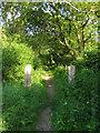 TQ5406 : Moorshill Lane by Simon Carey