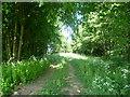 TF0504 : Hereward Way looking towards Burghley Park by Marathon