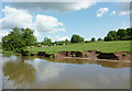 SJ9330 : Canal-side pasture south-east of Stone, Staffordshire by Roger  Kidd