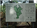 TL7806 : Information Board, Danbury Ridge Nature Trail by Roger Jones