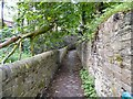 SJ9595 : Path to Mottram Road by Gerald England